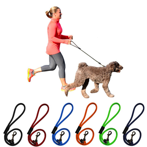 2' & 6' Durable Short Dog Leash