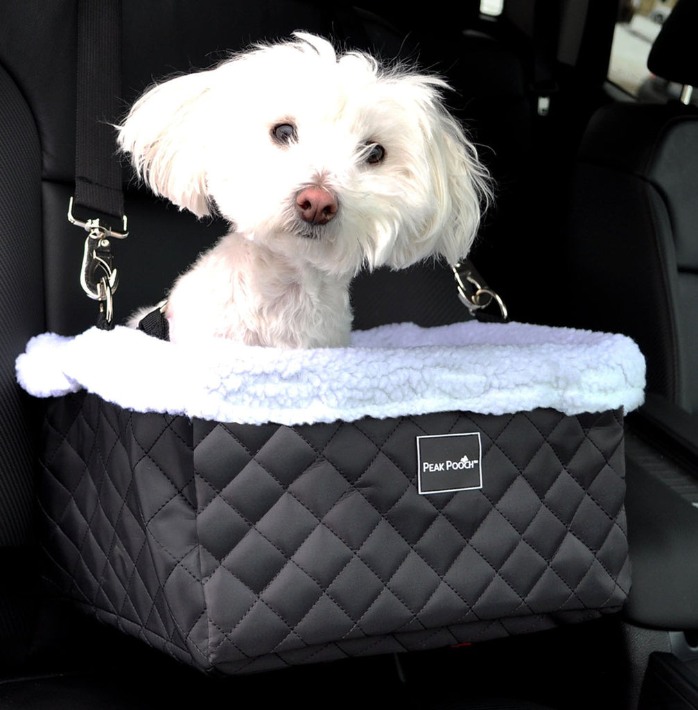 Luxurious Dog Booster Car Seat for Small Dogs – Downtown ...