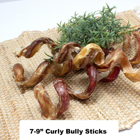 7 - 9 Inch USA Curly Bully Sticks - 100% Natural Dog Chew Treat