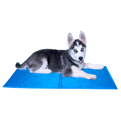Pet Dog Cooling Mat for Small Dogs and Cats
