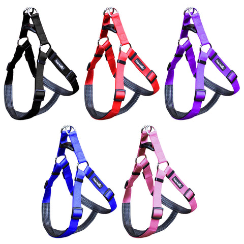 Padded Comfort Nylon Dog Walking Harness for Small, Medium, and Large Dogs