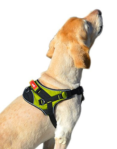 Peak Pooch Heavy Duty Reflective Padded Dog Harness - Green