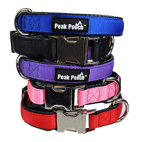 Adjustable Quick Release Dog Collar with Metal Buckle