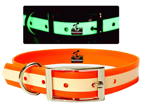 Glow Safety Dog Collars, No Batteries Required