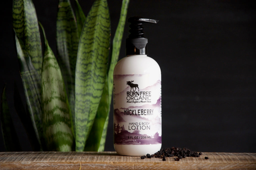 Huckleberry Hand & Body Lotion