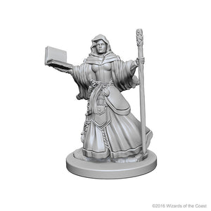 Miniature: Nolzur's | Human Female Wizard