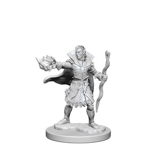 Miniature: Deep Cuts | Elf Male Sorcerer