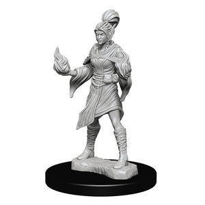 Miniature: Deep Cuts | Elf Female Sorcerer