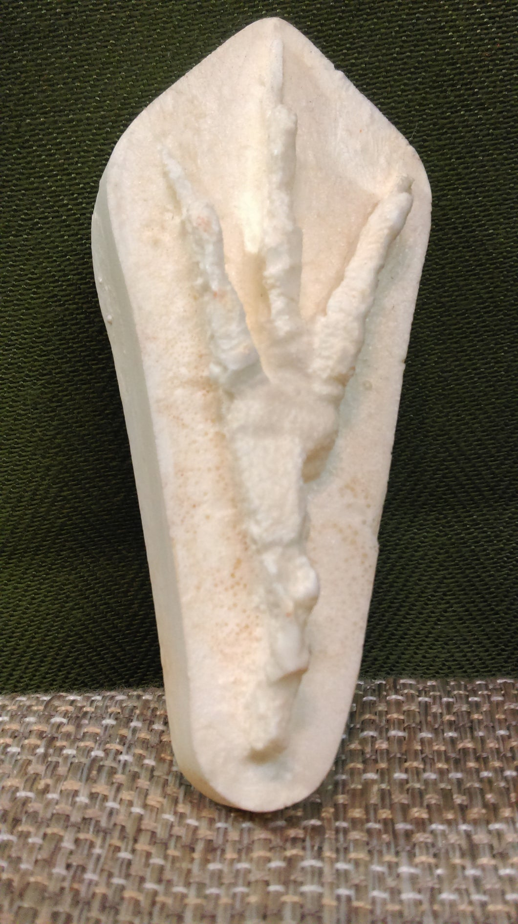 Crow Foot Cast