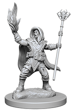 Miniature: Nolzur's | Elf Male Wizard