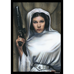 Princess Leia Card Sleeves