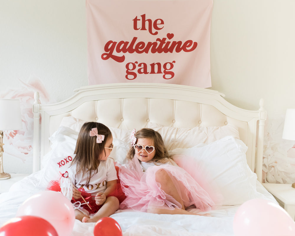 The Galentine Gang Mini-Backdrop