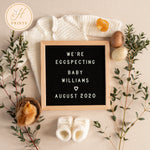 Editable Spring Pregnancy Announcement for Social Media, Spring Baby Announcement for Social Media, Personalized Letter Board Announcement