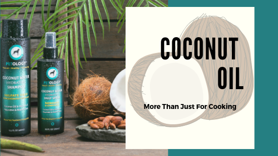 Coconut Oil: More Than Just For Cooking