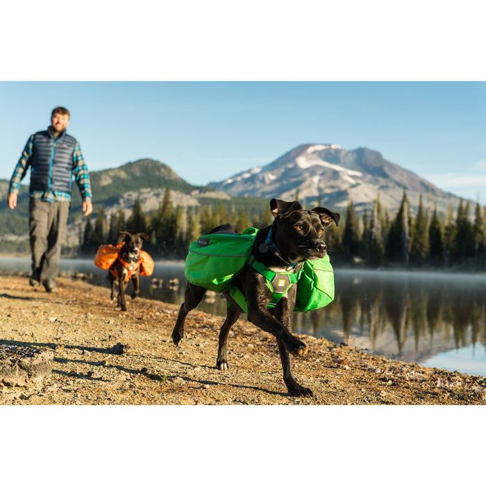 Ruffwear® | Approach Pack™ Everyday Hiking Dog Pack