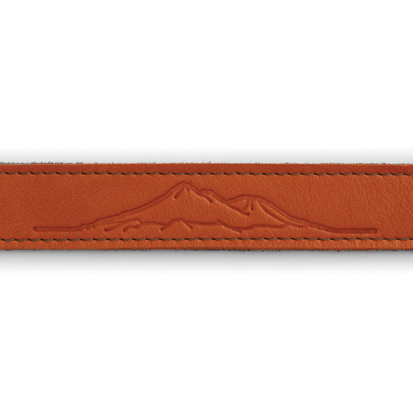 Ruffwear® | Frisco™ Full-Grain Leather Dog Collar