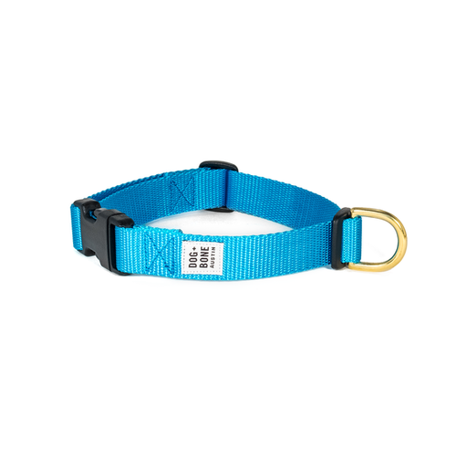 Dog + Bone | Snap Collar - Blue