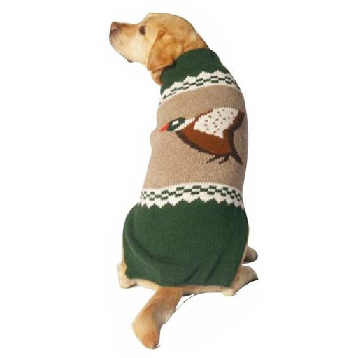 Chilly Dog - Sweater Mallard