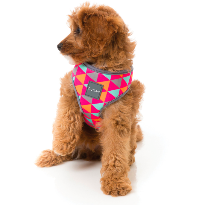FuzzYard | Dog Harness - FuzzYard Crush