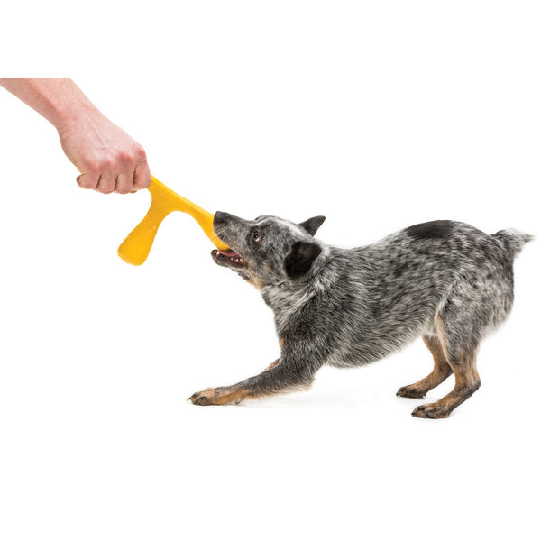 West Paw® | ZogoFlex Air® Wox® Tug Toy