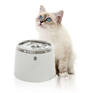 Catit® | Stainless Steel Drinking Fountain