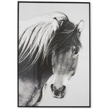 Wild Brumby Horse Black & White Wooden Framed Wall Art - Lost Design Society