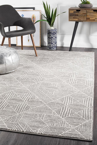Paradise Contemporary Silver Transitional Rug