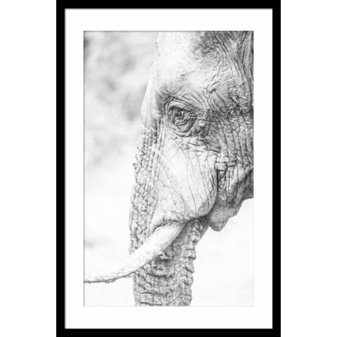 Elephant Wall Art | Side Portrait | 60x90x4cm - Lost Design Society