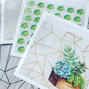 Succulents // Set of 3 Adhesive Pockets