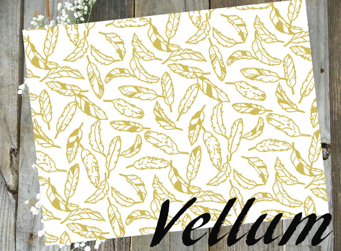 Gold Feathers // Vellum