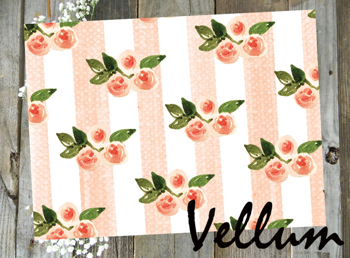 Peaches and Cream // Vellum