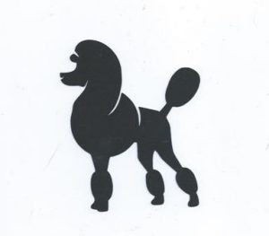 Cute poodle silhouette set of four