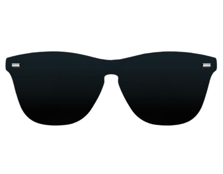SW SPACE - BLACK POLARIZED