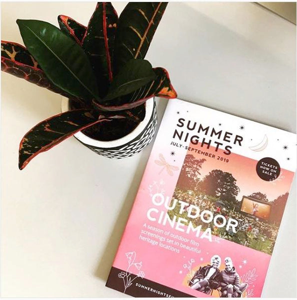 summer nights cinema
