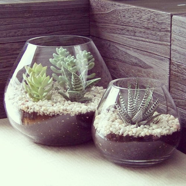 Say it with succulents - by Kiss the Moon