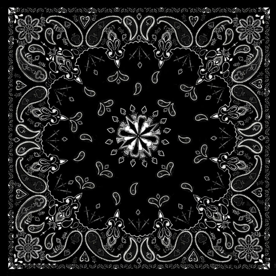 Daniel Smart Bandana Paisley with ZANheadgear Design, Unisex, Black