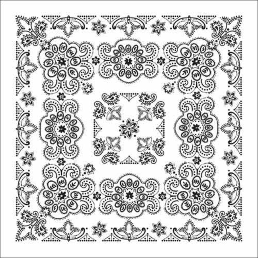 Daniel Smart Bandana Texas Paisley, 27 x 27 in