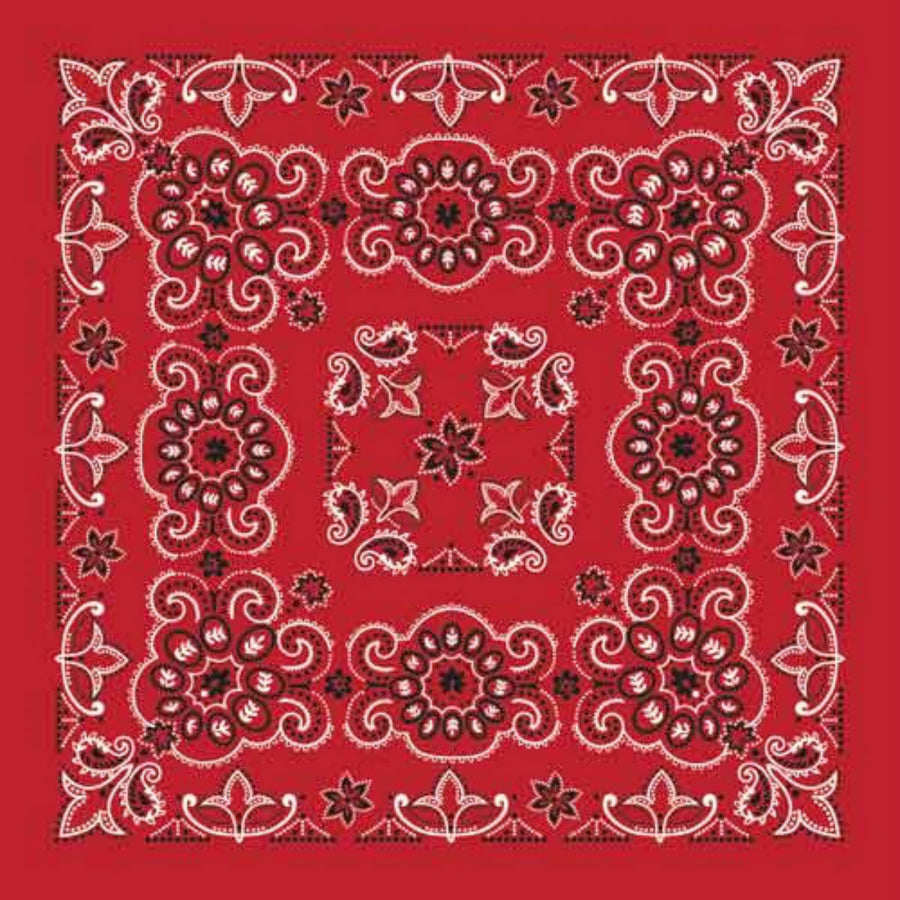 "Daniel Smart Bandana Texas Paisley, Red, 27""x 27"""