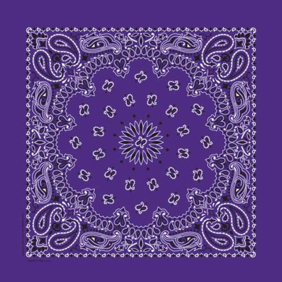 Daniel Smart Bandana Paisley, Purple