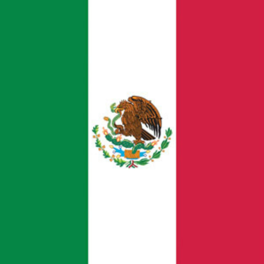 Daniel Smart Bandana Mexico Flag