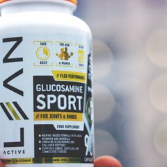 glucosamine supplement for joints