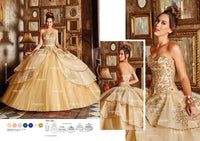 Ragazza Collection B84-384
