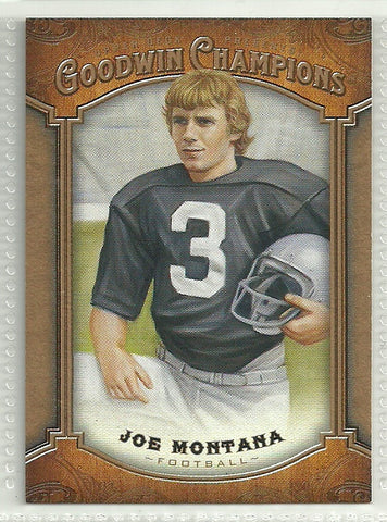 Joe Montana 2014 Upper Deck Goodwin Champions #70