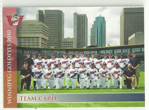 2010 Winnipeg Goldeyes Team Issued Card