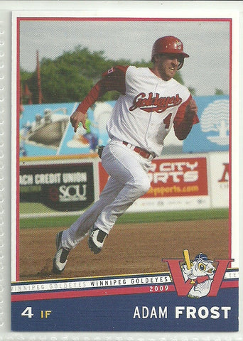 Adam Frost 2009 Winnipeg Goldeyes Team Issued Card