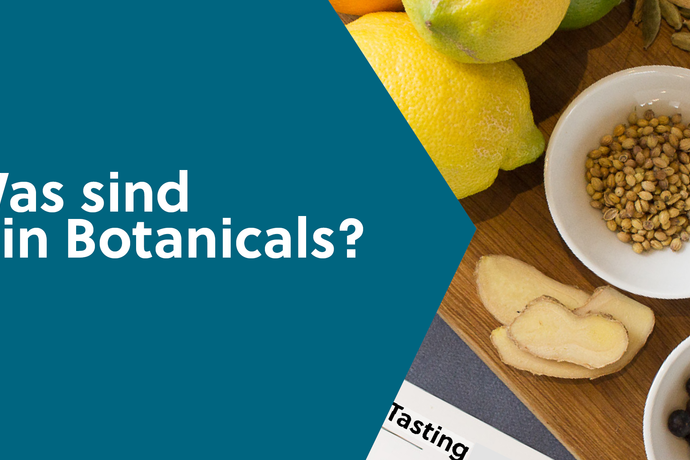 Im Video: Was sind Gin Botanicals?