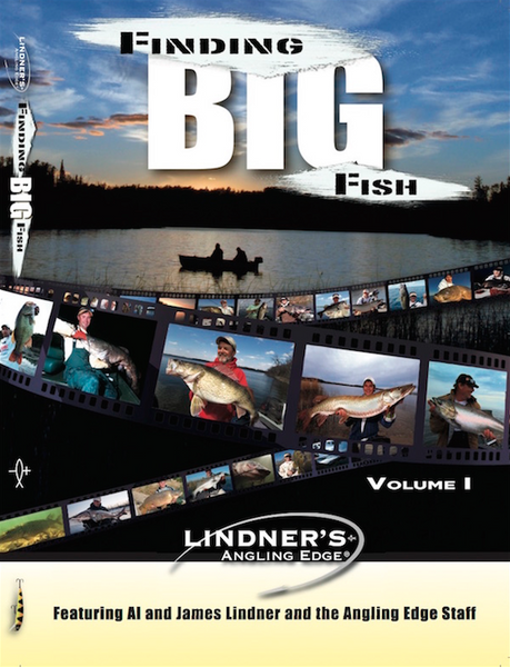 Finding Big Fish (front)