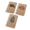 Journey Pocket Notes Set of 3 - The Meridian Line