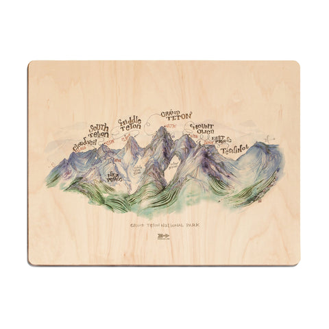 USA Parks Map Wood Print