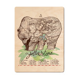 Yellowstone Grizzly Wood Print - The Meridian Line
